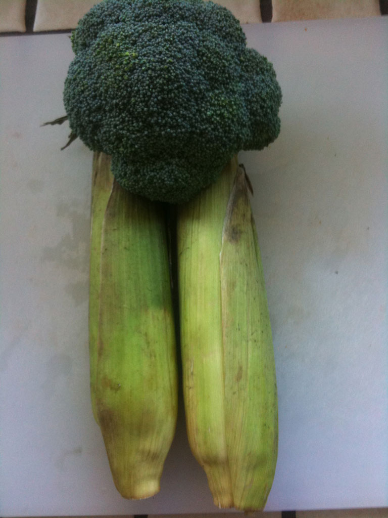 farmers market broccoli corn husk vegetable Im off supermarkets (and all farmers market) (13 pics)