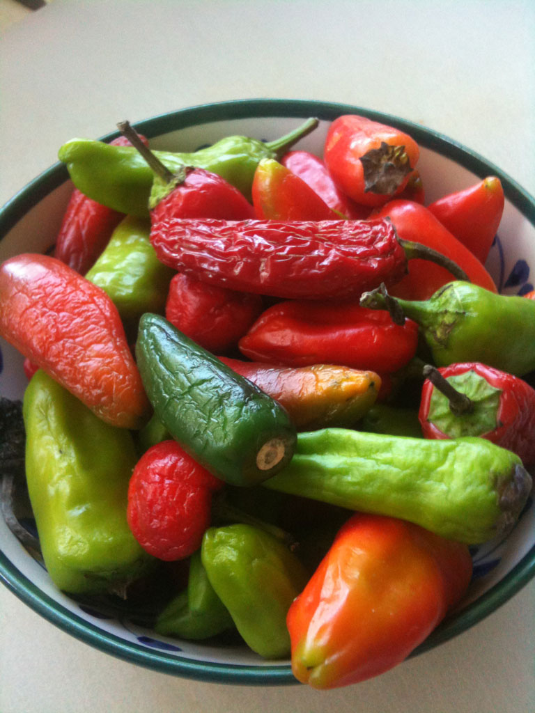 jalapenos dried red green farmers market spicy hot Im off supermarkets (and all farmers market) (13 pics)