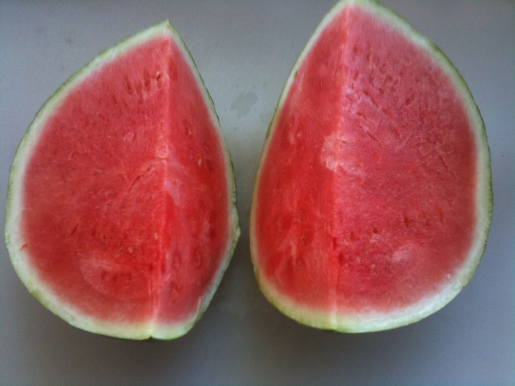 sliced watermelon juicy cut red fruit Im off supermarkets (and all farmers market) (13 pics)