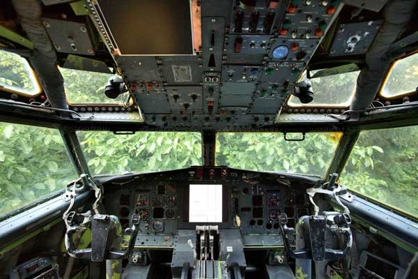 The cockpit view is dominated by a large walnut tree left over from the lands previous use as a walnut orchard An airplane is retired every 17 hours   one man decides to recycle one, turns it into a home