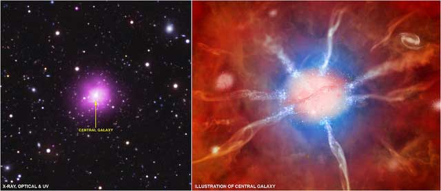 phoenix nebula star nursery massive cluster nasa X ray Observatory in purple an optical image from the 4m Blanco telescope in red green and blue and an ultraviolet UV image from NASAs Galaxy Evolution Explorer GALEX in blue Astronomers discover a star creating galaxy that sheds light on the galactic cooling problem