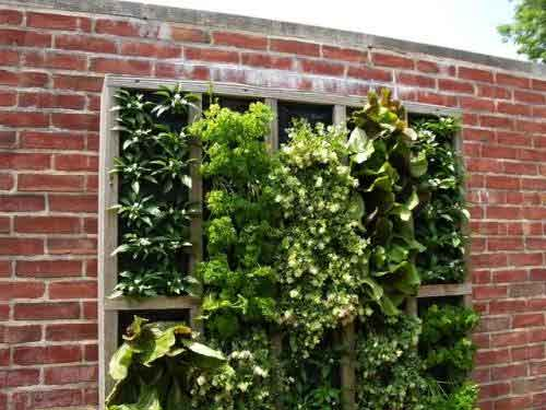 vertical gardens brick wall wooden box Stunning photos of vertical wall gardens