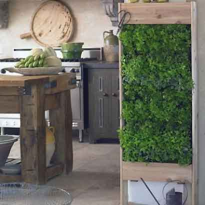 vertical gardens kitchen grass herbs wood Stunning photos of vertical wall gardens